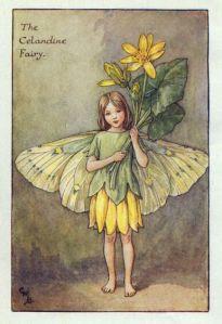 celandine_flower_fairy