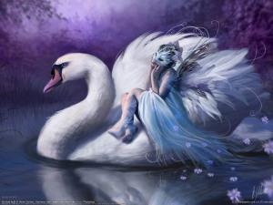 fairy-fairies-23564201-1600-1200